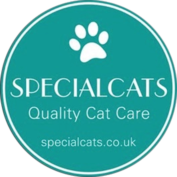 Specialcats of Ayr is a licensed outdoor style of cat only boarding cattery,